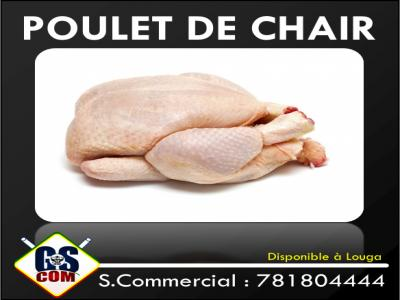 Poulet de Chair à Louga